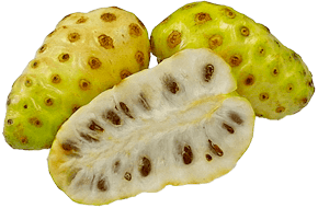 Bulk-Supply-Fruits_Noni