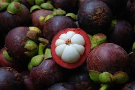 MANGOSTEEN: Discover Its Power