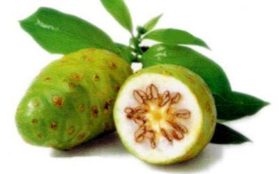 The Amazing Noni Superfruit Juice